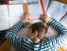 Intorno alla questione dei compiti a casa